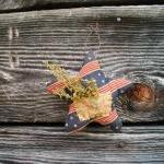 Primitive Americana Star - ..