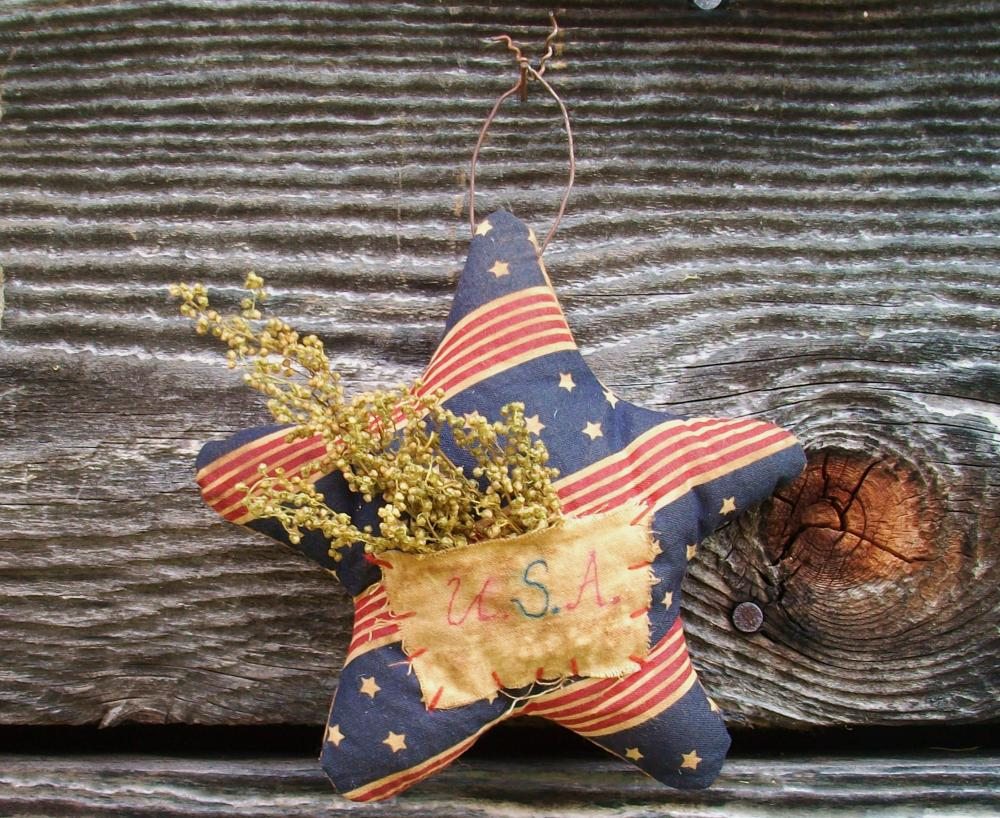 Primitive Americana Star - July 4 Decoration with Sweet Annie - Wall Hanging or Ornament